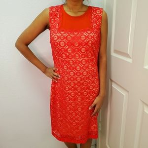 Bebe Red Sheer Lace Dress